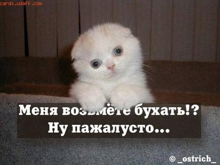 Все любят отдохнуть)