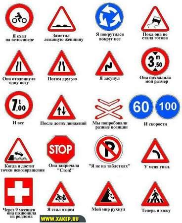 Жизнь  в знаках