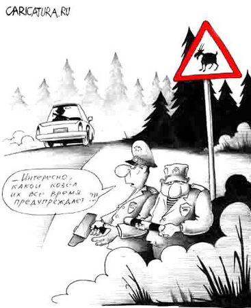 Козел на дороге